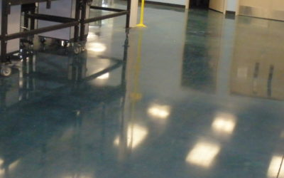 A Beginner's Guide to Dying Polished Concrete